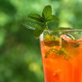Cocktailbar Kakadu